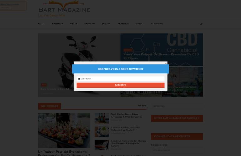 bart-magazine.com